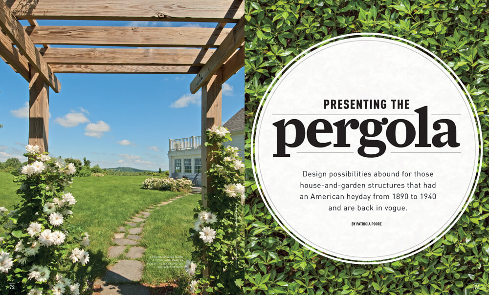Presenting the Pergola by Megan Hillman